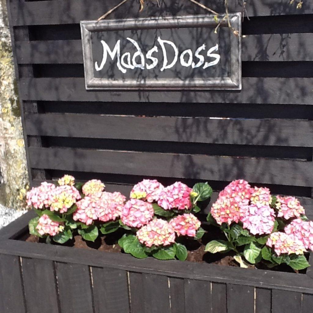 mads_doss
